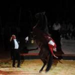 equestres-orange-2015-4