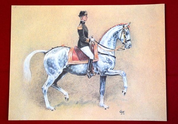 Lithographie cheval gris